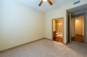 Two Bedroom Apartments for Rent in Houston, TX - Apartment Bedroom
